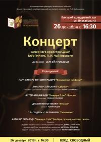 Концерт Камерного оркестра Специальной Детской Школы Искусств